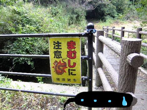 2011_09220053.jpg