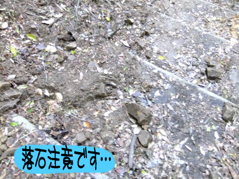 2011_10140014.jpg