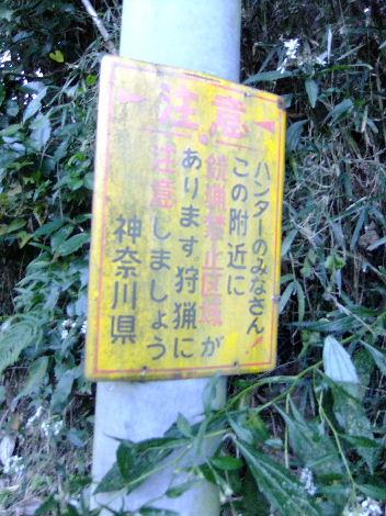 2011_11260034.jpg