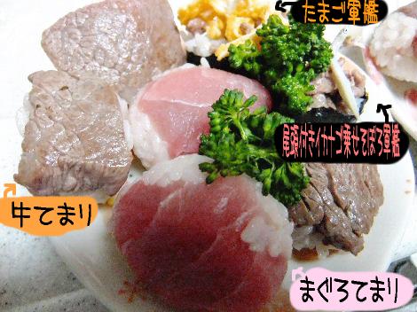 2012_03060075.jpg