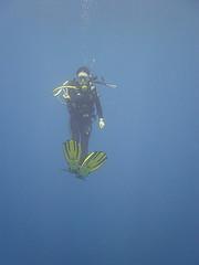プーケット ダイビング潜降
