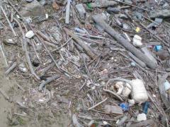 プチサイクリング(ゴミ)