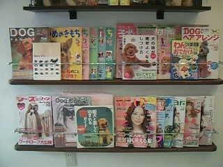 ワンコ雑誌いっぱい♪♪