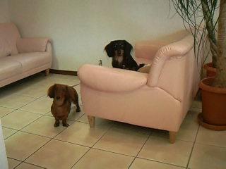 いつものソファー席にて♪