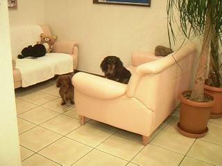 お気に入りのソファー席♪