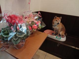 御祝いのお花と一緒に♪