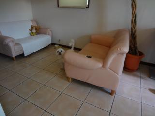 お気に入りのソファー席♡