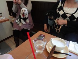 カフェにて♪