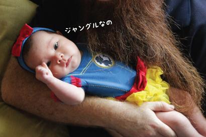 E_12192013-01.jpg