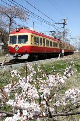 岩野(2011.4.17)