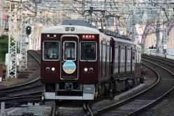 十三(2011.5.15)