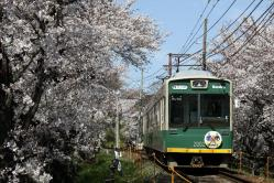 宇多野~鳴滝間(2010.4.4)