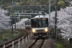 和泉鳥取~山中渓間(2010.4.4)