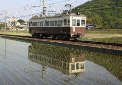 白山~井戸間(2010.5.16)