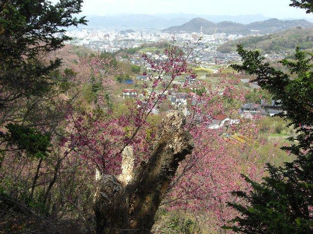 2010GW東京~札幌16