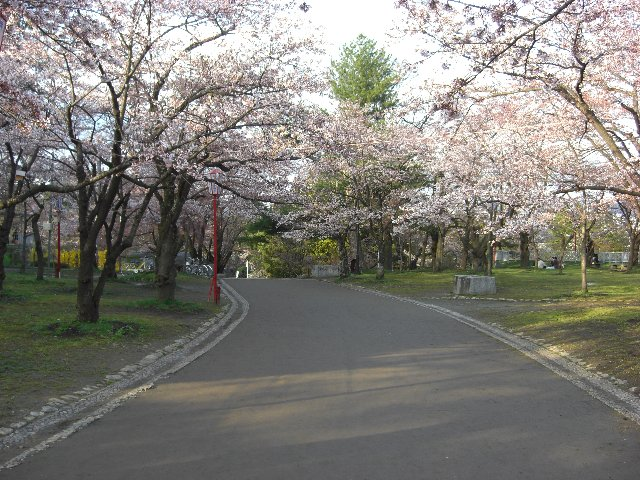 2010GW東京~札幌38