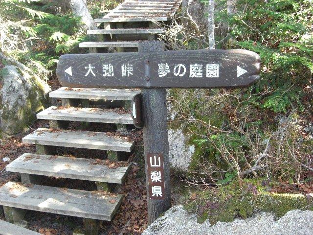 20101107大弛峠11