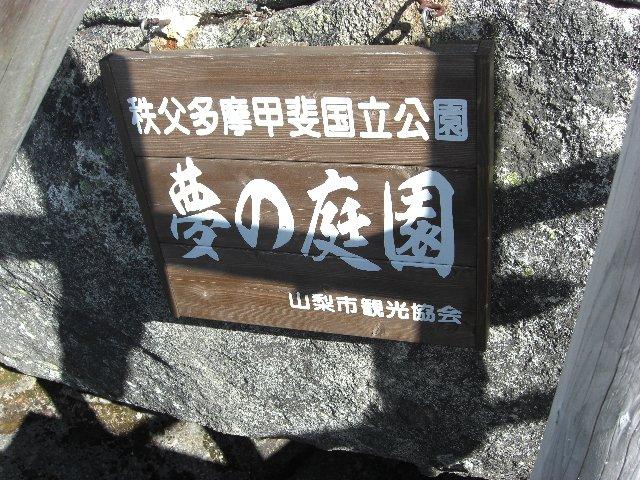 20101107大弛峠12