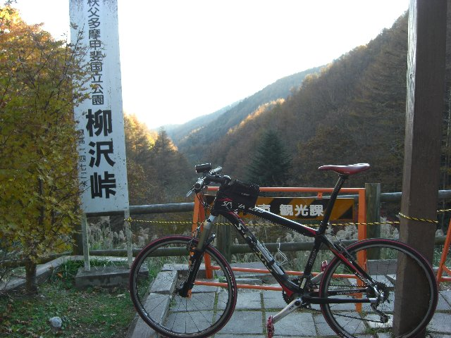 20101107大弛峠17