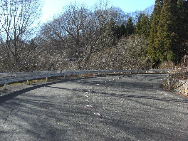 20101204軽井沢27