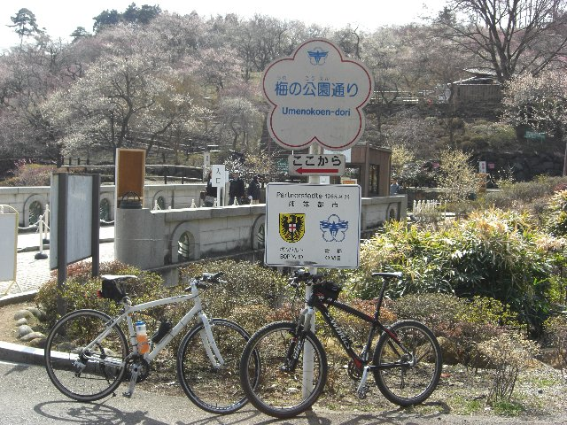 20110312吉野梅郷01