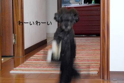 03_20110905232112.jpg