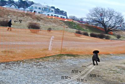 dsc_9654.jpg