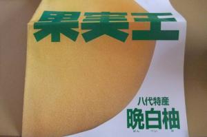 晩白柚広告