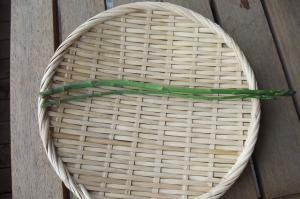 アスパラガス二本収穫