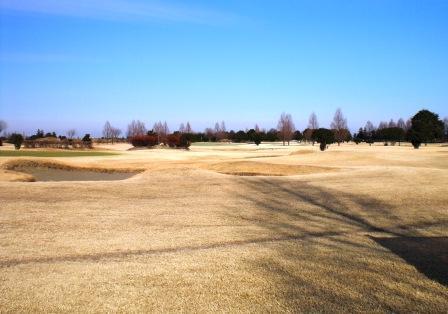 golfa4.jpg