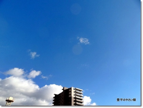 2013-11-41-DSC00662-201401151.jpg