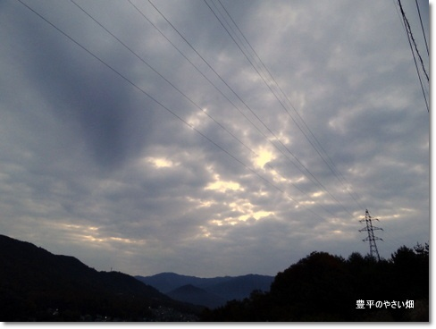 2013-11-41-DSC067131.jpg