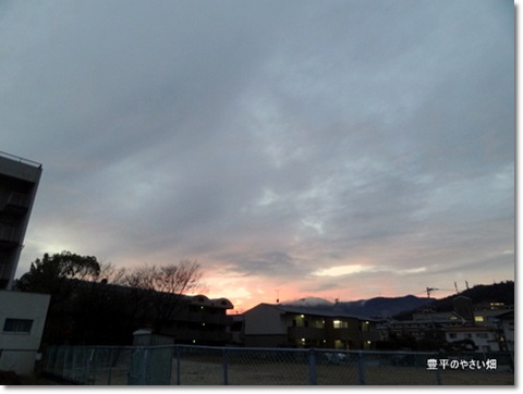2013-11-41-DSC083681.jpg