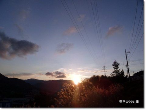 2013-11-41-DSC096911.jpg