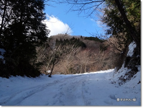 2013-11-41-DSC097271.jpg