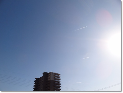 2013-11-4DSC088171.jpg