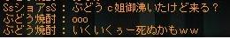 Maple110609_060109.jpg
