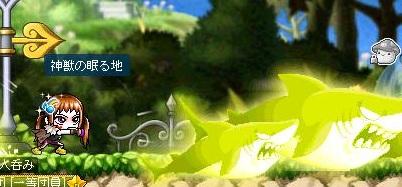 Maple110708_173555.jpg