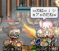 Maple110720_214607.jpg