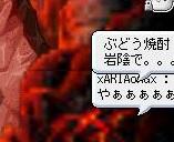 Maple110724_234048.jpg