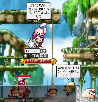 Maple110729_225903.jpg