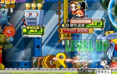 Maple110806_122259.jpg