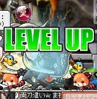 Maple110806_211532.jpg