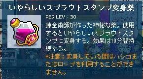 Maple110820_222906.jpg