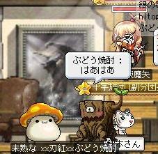 Maple110820_230052.jpg