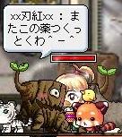 Maple110820_230601.jpg