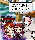 Maple110907_220439.jpg