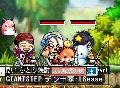 Maple110908_220323.jpg