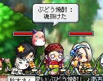 Maple110908_220547.jpg