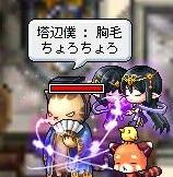 Maple111001_233129.jpg